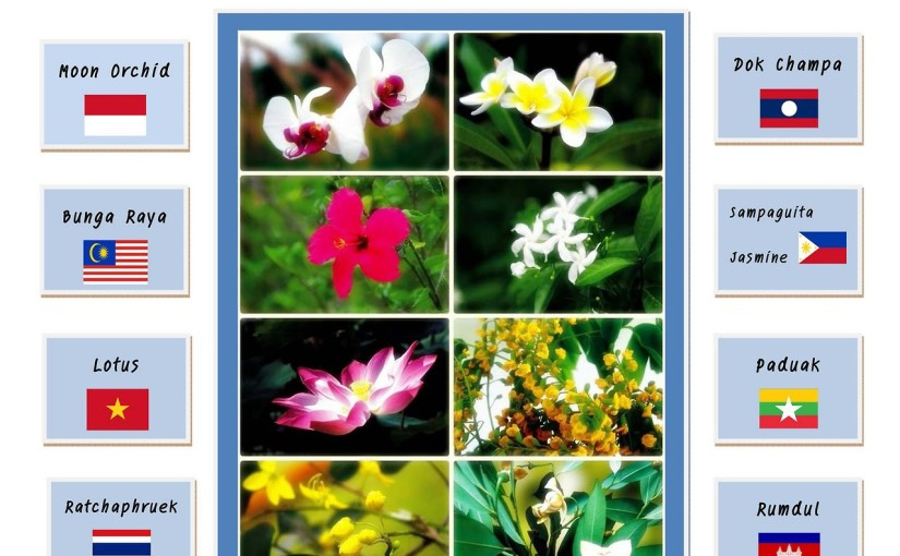 National Flower Series - South East Asia - Summary