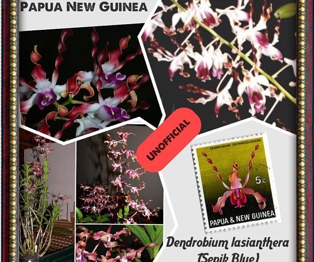 National Flower Series - Oceania 1- Papua New Guinea