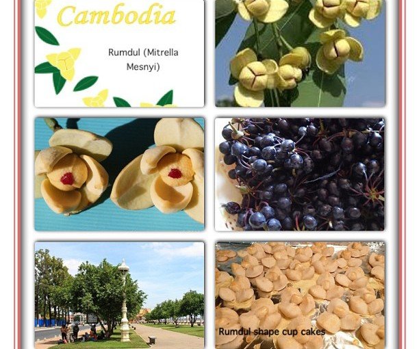 National Flower Series - South East Asia 7- Cambodia